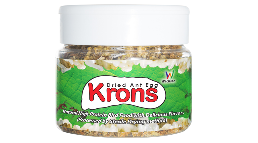 Krons Web